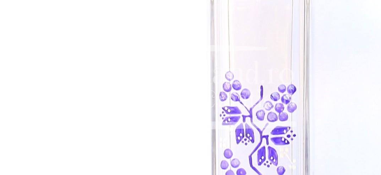 "Set sticla de vin si pahar ""Ethno Grapes"""
