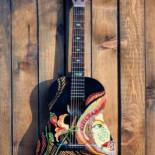 Chitara acustica personalizata
