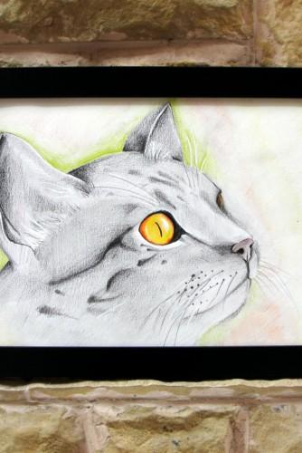 "Ilustratie ""Grey Cat"""